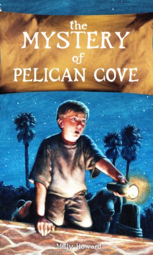 The Mystery of Pelican Cove